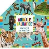 Girasol - Carte pop-up Animale salbatice