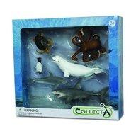 Collecta - Set 6 Figurine Viata Acvatica