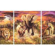 Simba - Pictura pe numere Cei 5 eroi ai africii , Schipper , 3 tablouri, Multicolor