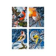 Simba - Pictura pe numere Iarna pasari zgribulite , Schipper , 4 tablouri, Multicolor