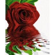Simba - Pictura pe numere Trandafirul rosu , Schipper, Multicolor