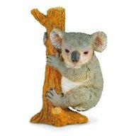 Collecta - Figurina Urs Koala