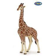 Papo - Figurina Girafa mascul