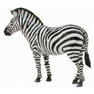 Collecta - Figurina Zebra