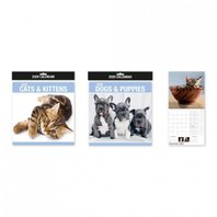 2020 CALENDAR  SQUARE PHOTOGRAPHIC PUPPIES/KITTY