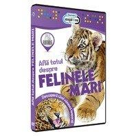 DVD Afla totul despre felinele mari