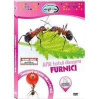 DVD Afla totul despre furnici