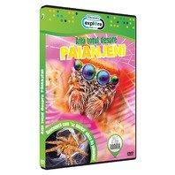 DVD Afla totul despre paianjeni