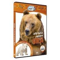 DVD Afla totul despre ursi
