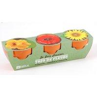 Kit 3 Mini ghiveci teracota - flori