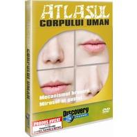 DVD Atlasul Corpului Uman - Mecanismul hranirii. Gustul si mirosul