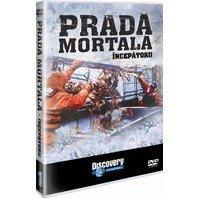 DVD Prada mortala: Incepatorii