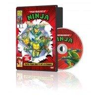Testoasele Ninja - DVD Slim Vol.1