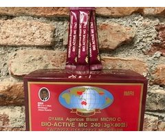 NATURAL AGARICUS BIO ACTIVE MC PLIC 3 GR