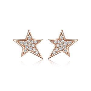 Cercei din argint Amazing Rose Stars