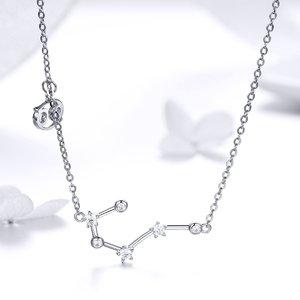 Colier din argint cu Constelatia Rac silver