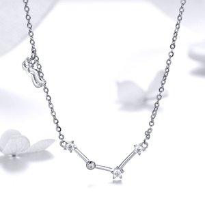 Colier din argint cu Constelatia Varsator silver