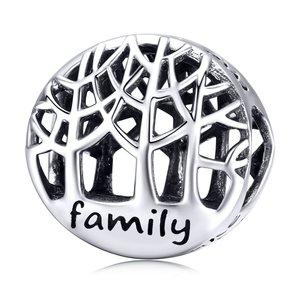 Talisman din argint Family Loves Me