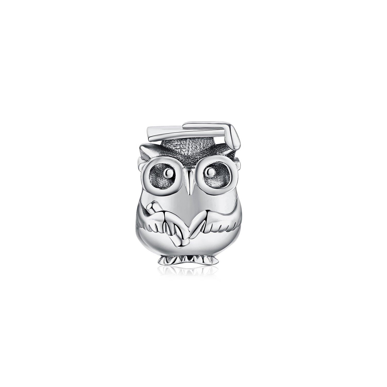 Talisman din argint Wise Owl poza 2021