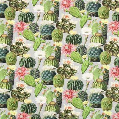 Home Decor Premium - Cactus Mix
