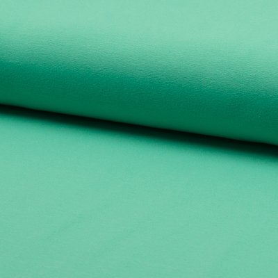 Solid Cotton Jersey - Mint