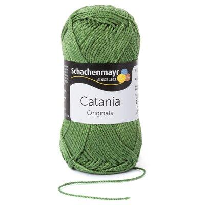 fire-bumbac-catania-kiwi-00212-35612-2.jpeg