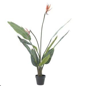 Strelitia, Floare artificiala ghiveci, Plastic, Verde