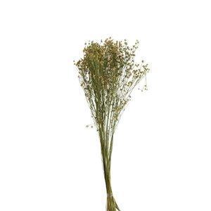 Terio Floare artificiala, Ratan, Galben