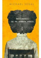 PSIHIATRII DE PE STRADA FENIX