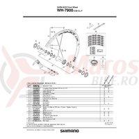 Ax butuc fata Shimano WH-7900-F