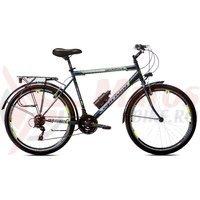 Bicicleta Capriolo Metropolis Man 26 gray-green