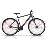 Bicicleta Cross C-Trax IGH 28