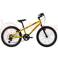 Bicicleta Devron Riddle K1.2 20