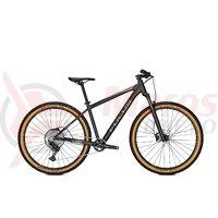 Bicicleta Focus Whistler 3.9 29 diamond black