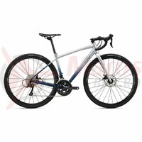 Bicicleta Sosea LIV GIANT Avail AR3 28'' Gray Dawn 2020
