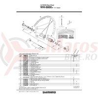 Caseta Shimano WH-6800-R Complet