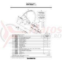 Con Shimano WH-RS61 stanga