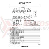 Pinion Shimano CS-6600 21-24-27T
