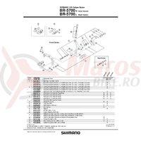 Suruburi Shimano BR-5700 M4x12.5