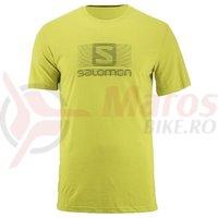 Tricou activitati urbane Salomon Blend Logo SS Tee citrolelle barbati