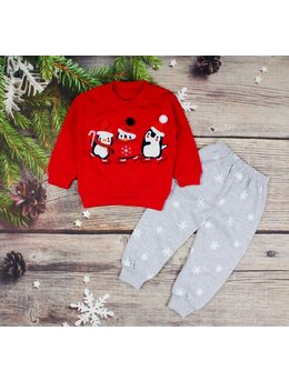 Costumas iarna pinguini rosu-gri