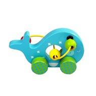 Balena din lemn, Multicolora