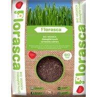 Pamant ecologic pentru iarba de grau 3 litri