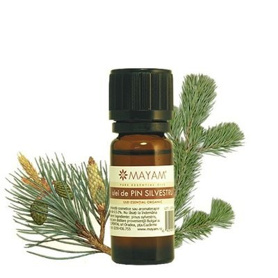 Pin silvestru BIO ulei esenţial (pinus sylvestris) 10 ml