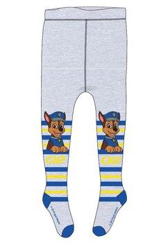 Ciorapi cu chilot, Chase 02, gri cu dungi colorate