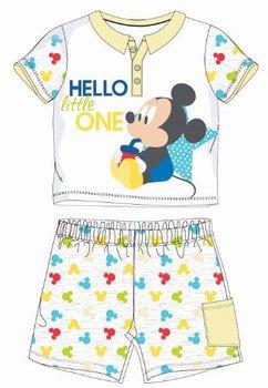 Compleu bebe, 2 piese, Mickey, gri
