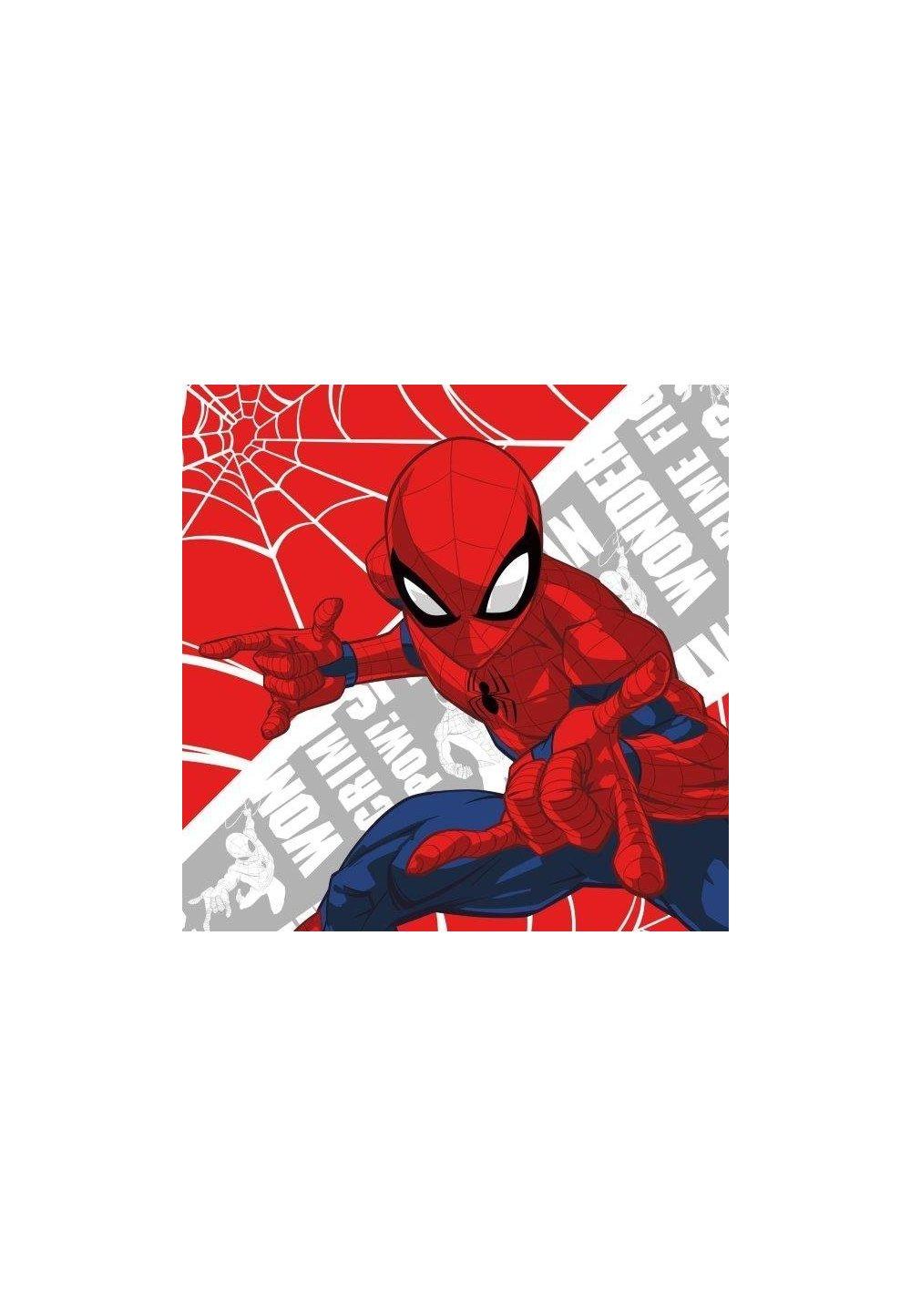 Prosopel magic, Spider-Man, 30x30cm imagine
