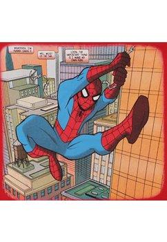 Tricou Spider-Man, alb cu albastru