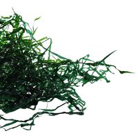 Decor verde plastic