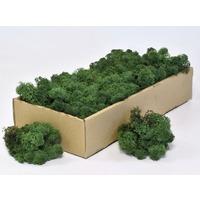 Licheni decorativi verde inchis